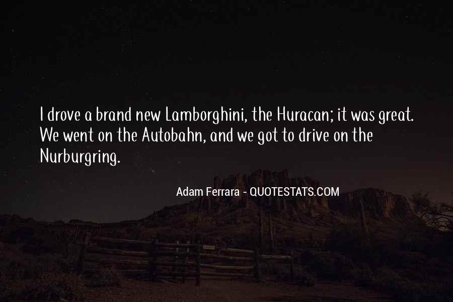 Adam Ferrara Quotes #194346