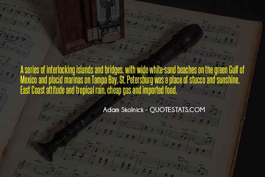 Adam Skolnick Quotes #803779