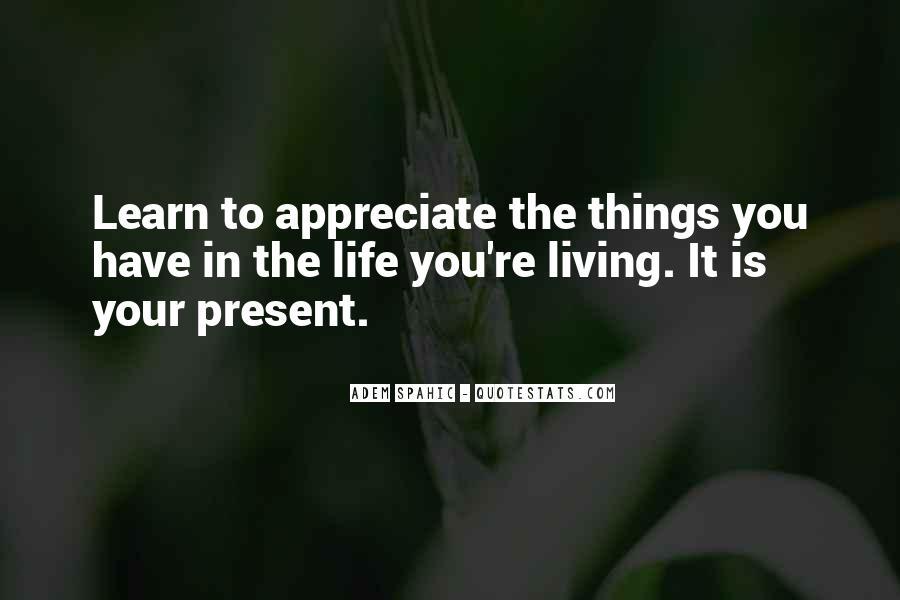 Adem Spahic Quotes #69860