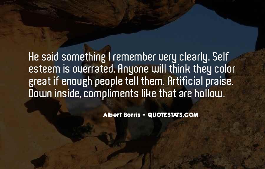 Albert Borris Quotes #563066