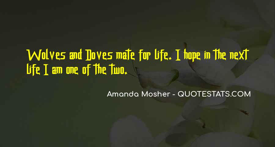 Amanda Mosher Quotes #213084