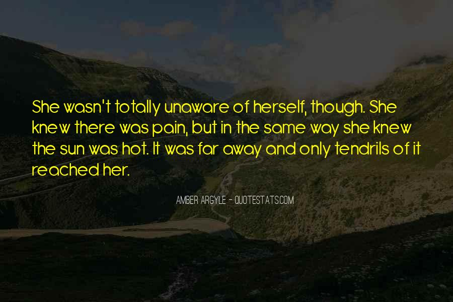 Amber Argyle Quotes #205702