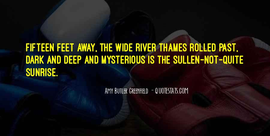 Amy Butler Greenfield Quotes #986736