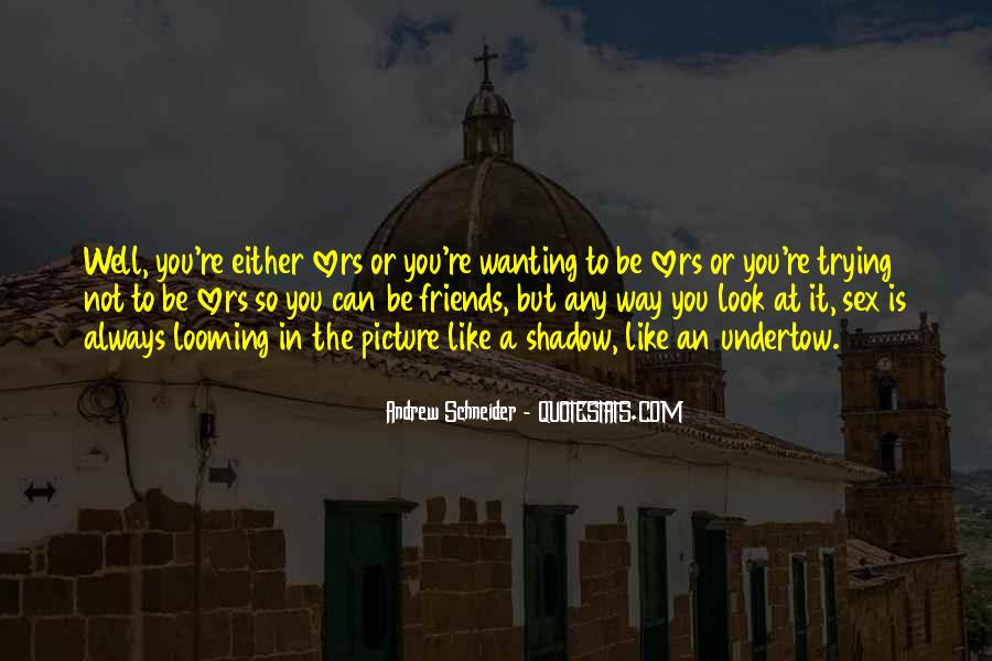 Andrew Schneider Quotes #39709