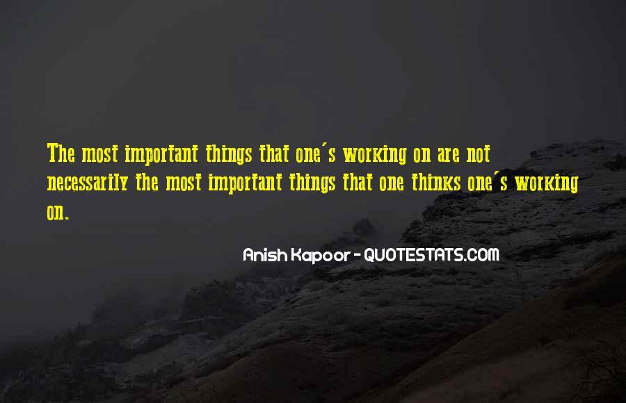 Anish Kapoor Quotes #1672942