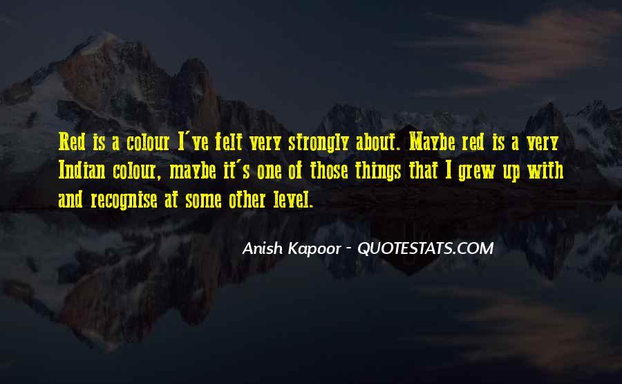 Anish Kapoor Quotes #315204