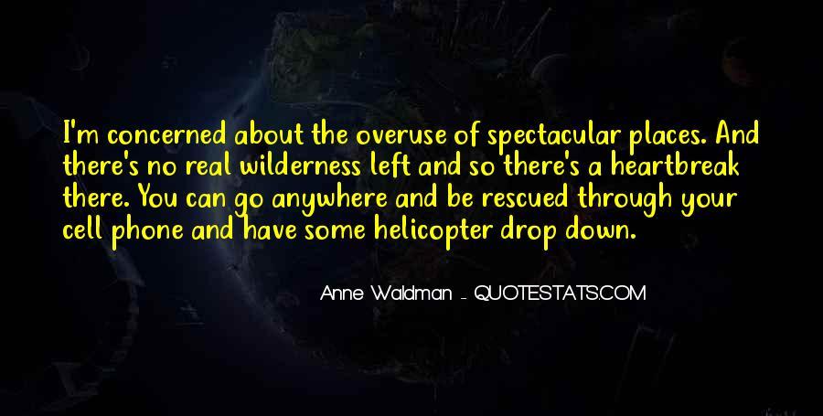 Anne Waldman Quotes #442281