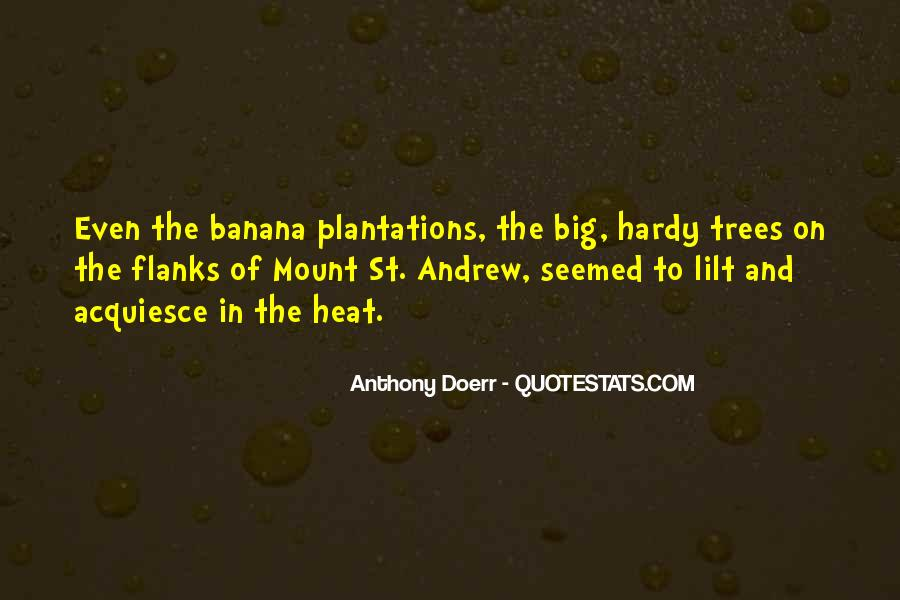 Anthony Doerr Quotes #399866