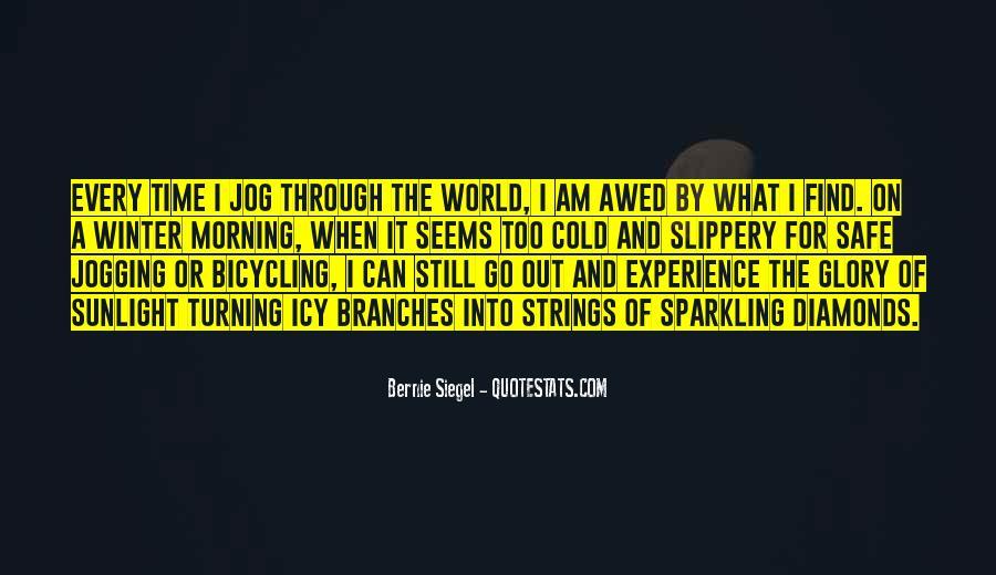 Bernie Siegel Quotes #1163568