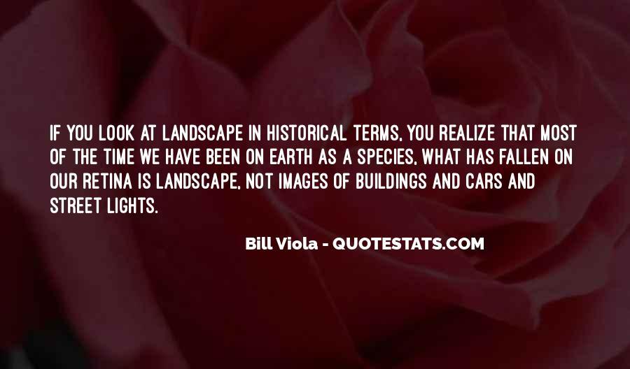 Bill Viola Quotes #1090982