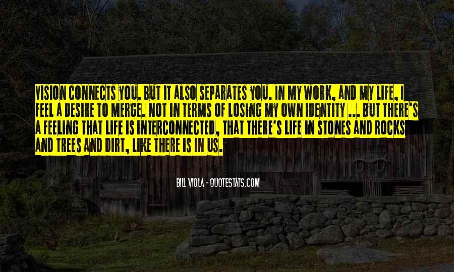 Bill Viola Quotes #456015