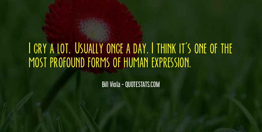 Bill Viola Quotes #579759