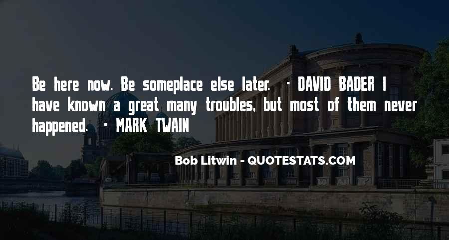Bob Litwin Quotes #1834859