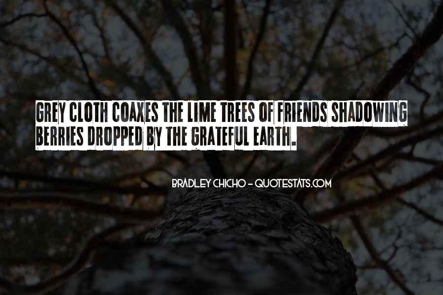 Bradley Chicho Quotes #398186