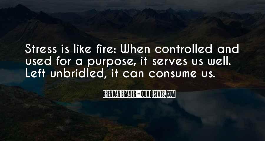 Brendan Brazier Quotes #839528
