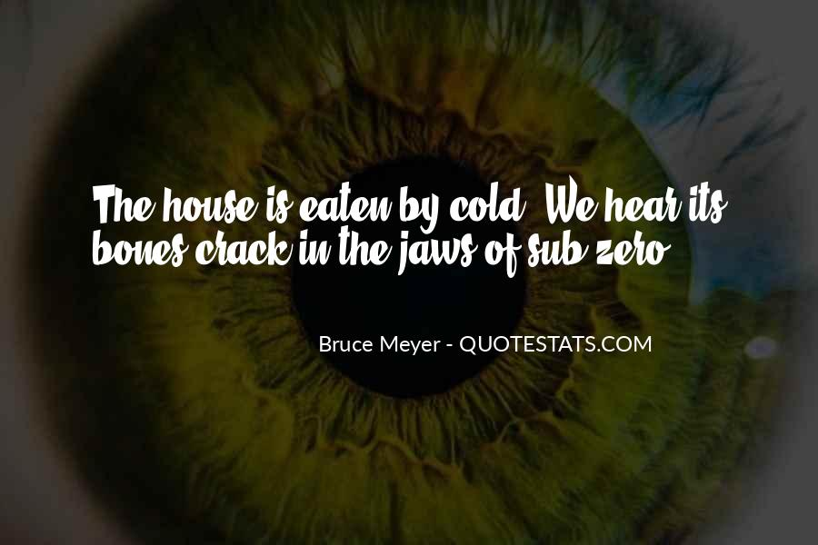 Bruce Meyer Quotes #595545