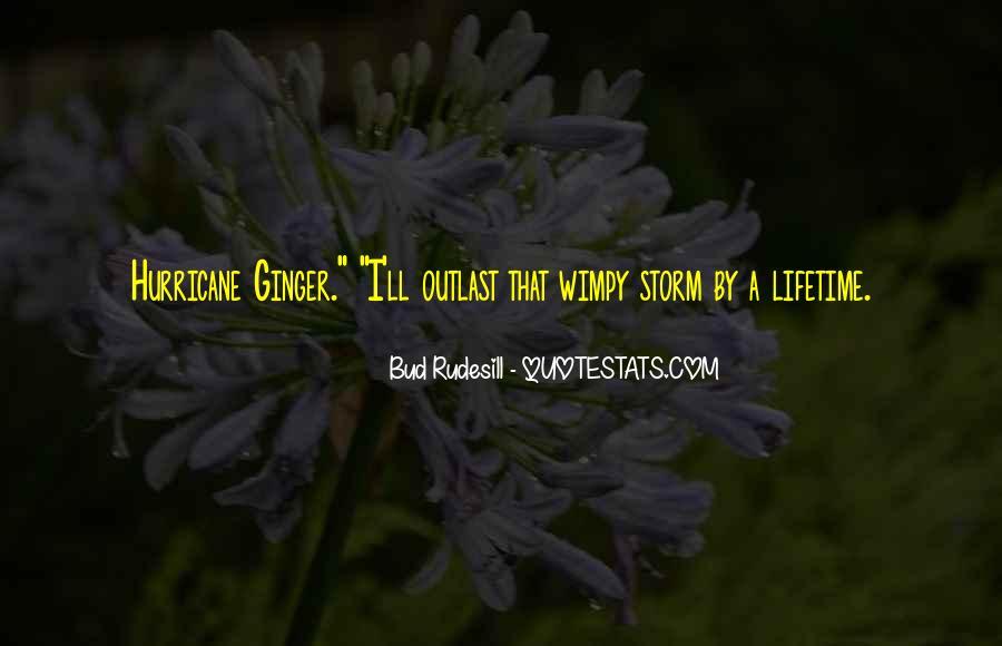 Bud Rudesill Quotes #1232767