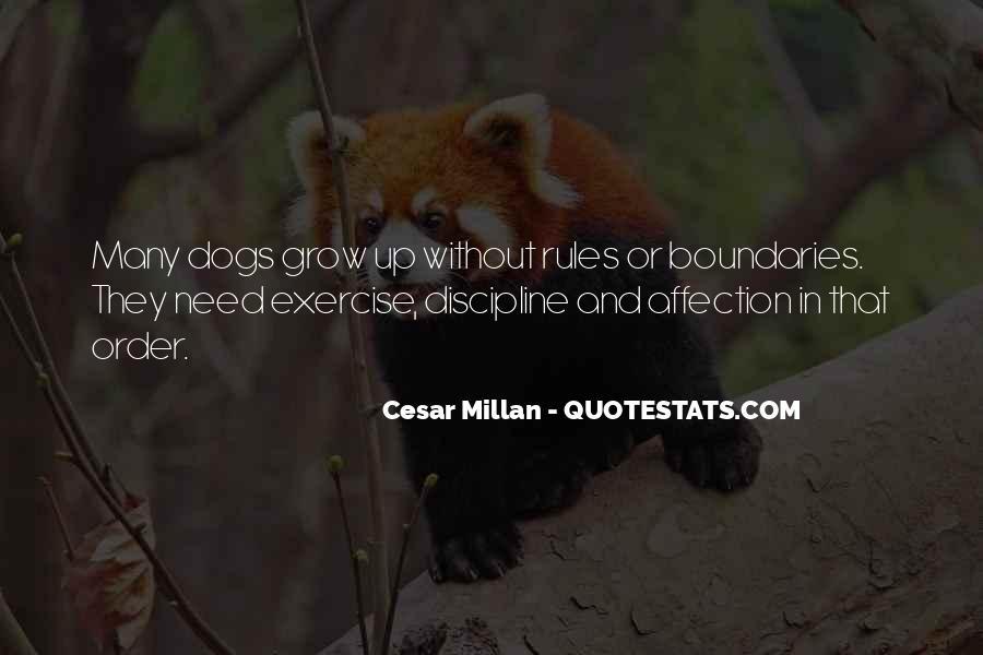 Cesar Millan Quotes #144065