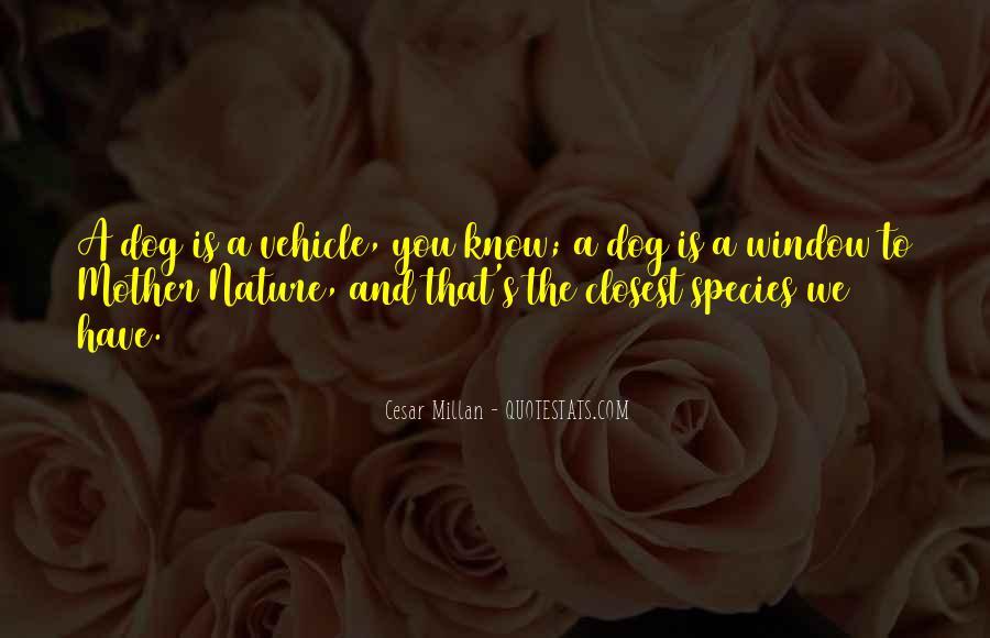 Cesar Millan Quotes #1746722
