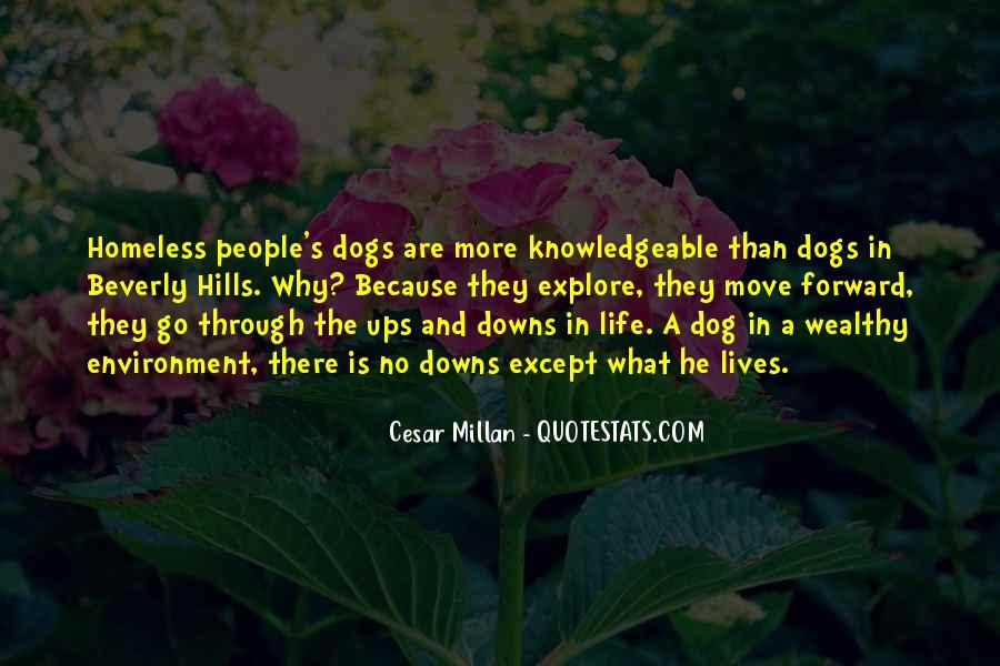 Cesar Millan Quotes #1775330