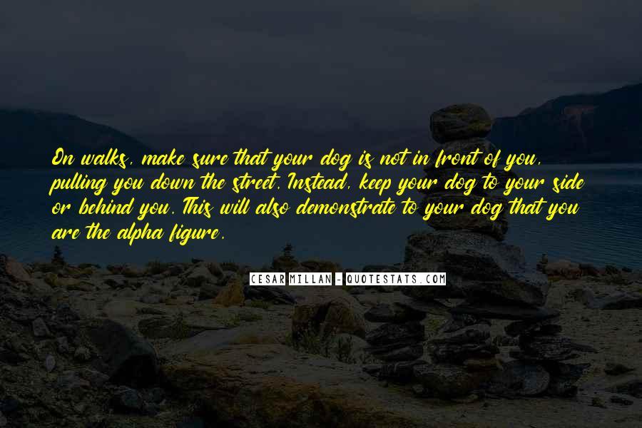 Cesar Millan Quotes #1829468