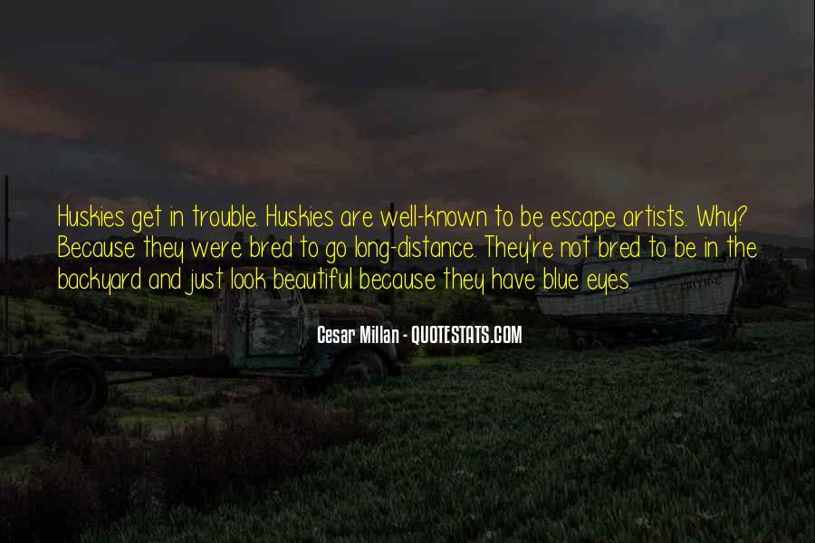 Cesar Millan Quotes #1879034