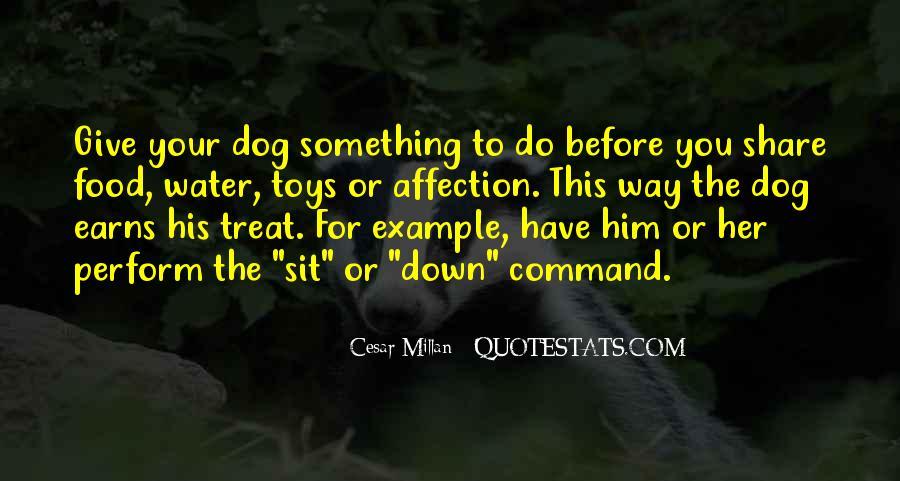 Cesar Millan Quotes #814414