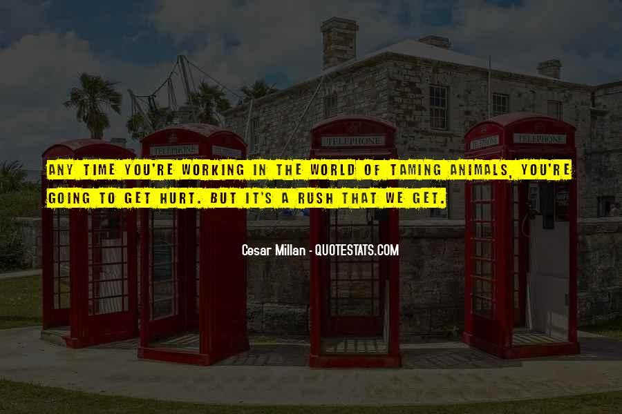 Cesar Millan Quotes #867874