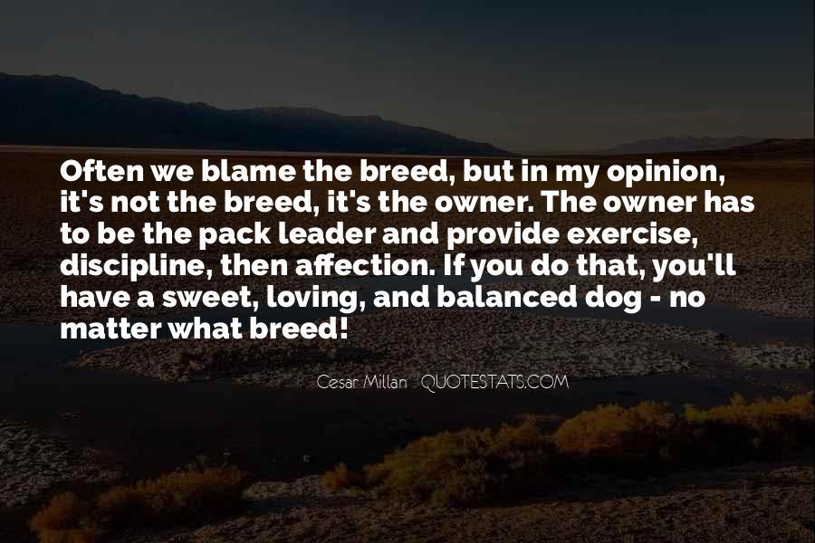 Cesar Millan Quotes #927535