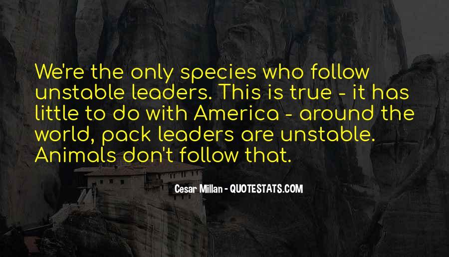 Cesar Millan Quotes #975084