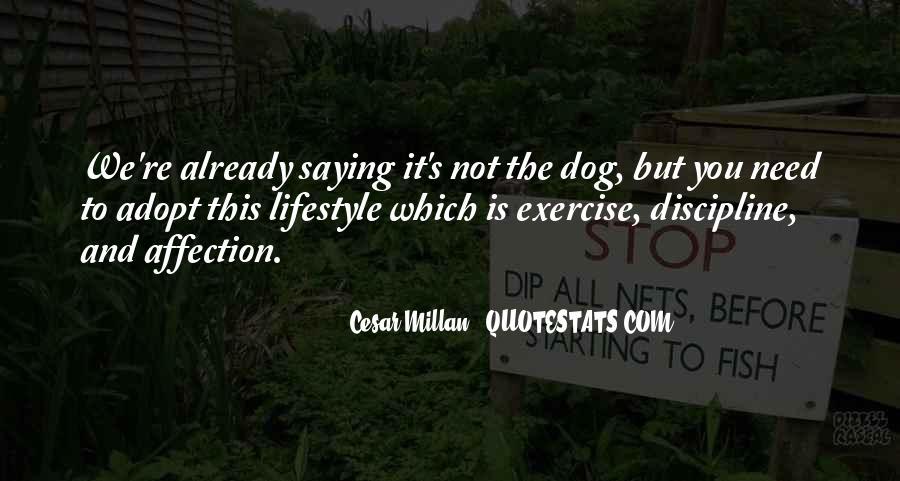 Cesar Millan Quotes #993759