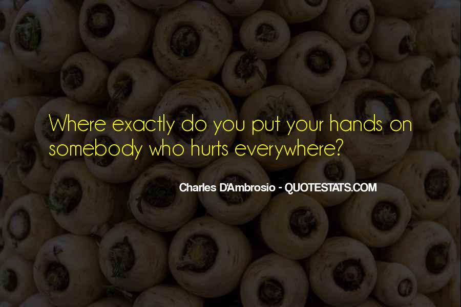 Charles D'Ambrosio Quotes #769653