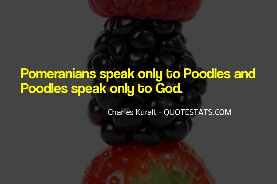 Charles Kuralt Quotes #585384