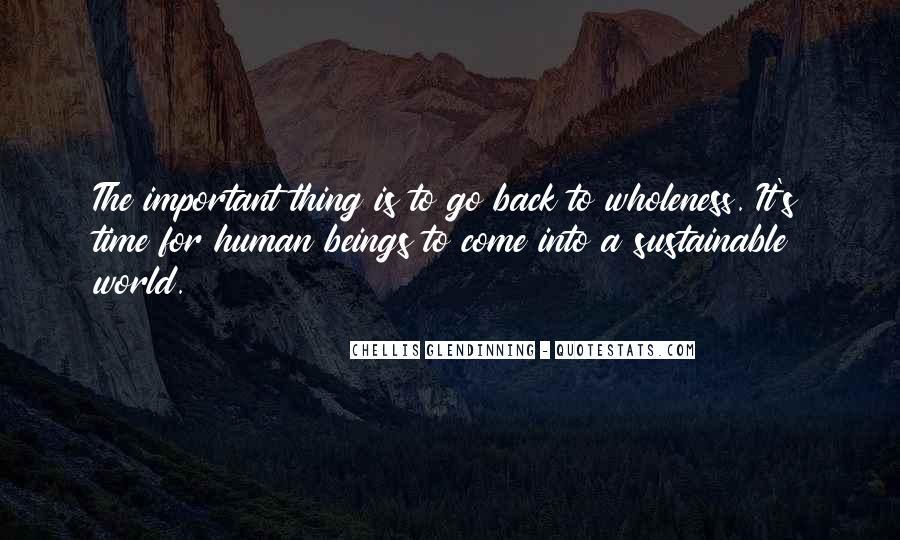 Chellis Glendinning Quotes #1024842
