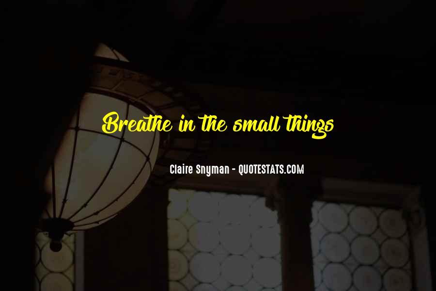 Claire Snyman Quotes #660496