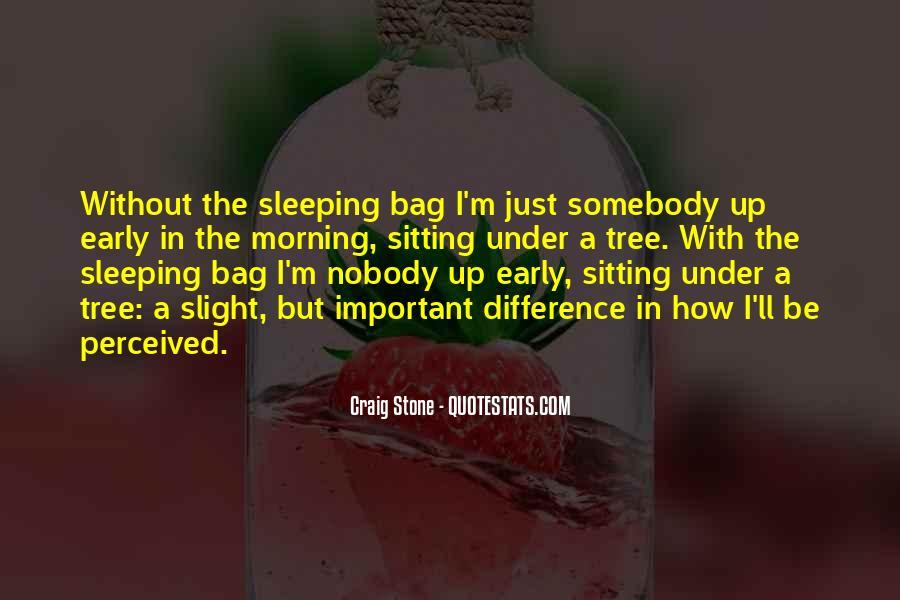 Craig Stone Quotes #1564104