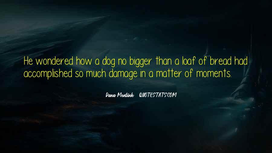 Dana Mentink Quotes #704531