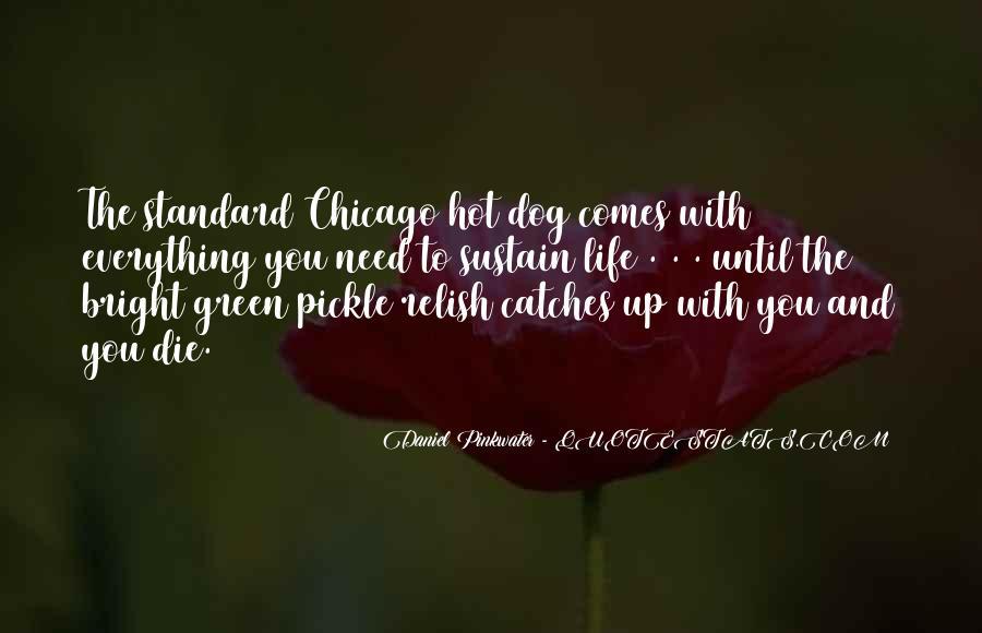 Daniel Pinkwater Quotes #1002367