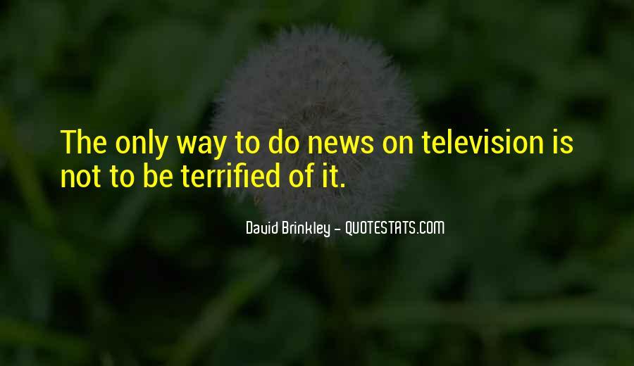 David Brinkley Quotes #996359