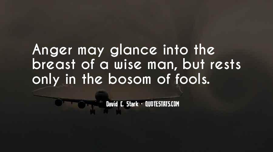 David C. Stark Quotes #819003