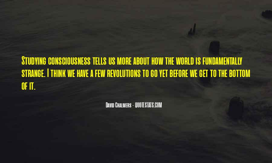 David Chalmers Quotes #1336275