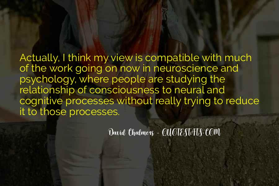 David Chalmers Quotes #1785879