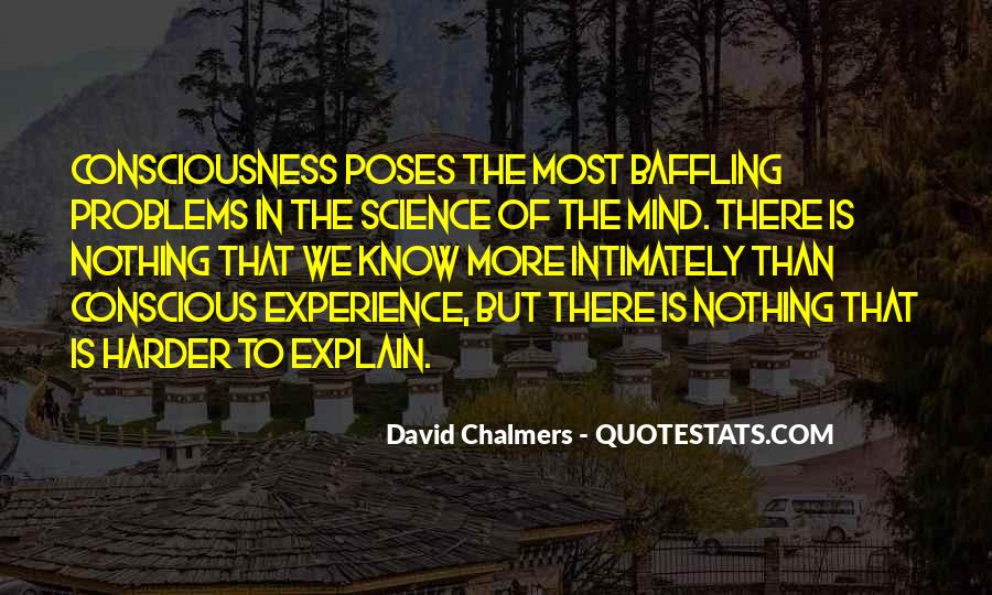 David Chalmers Quotes #576769