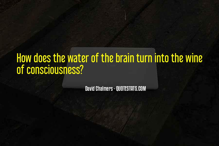 David Chalmers Quotes #953795
