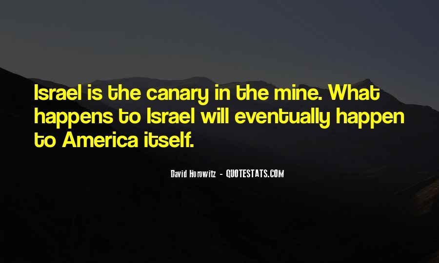 David Horowitz Quotes #879298