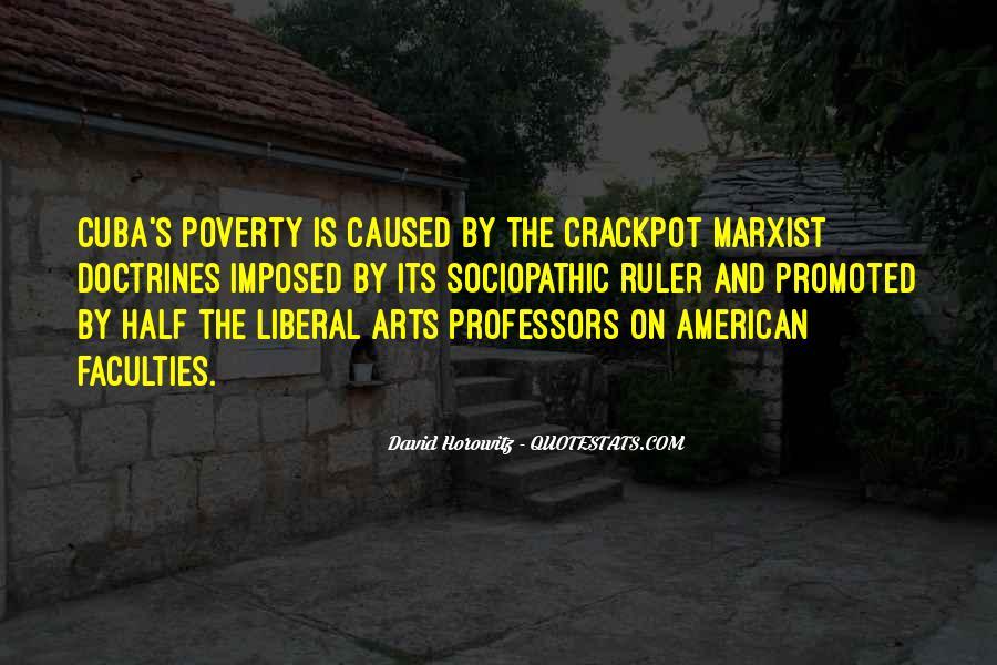 David Horowitz Quotes #973988