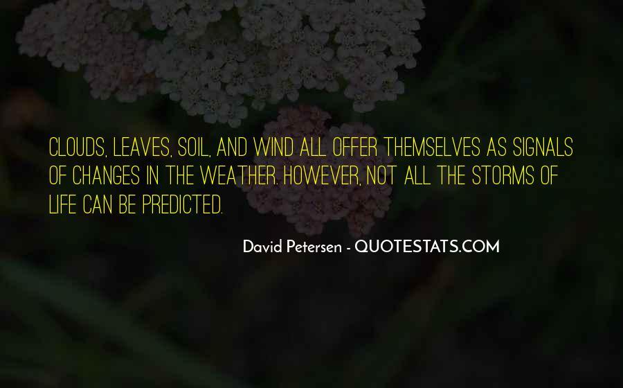 David Petersen Quotes #23217