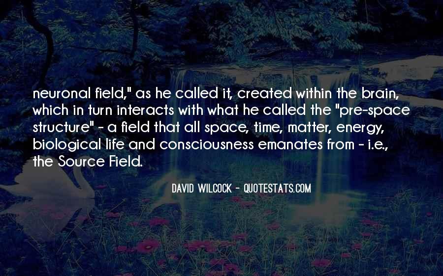 David Wilcock Quotes #1108979