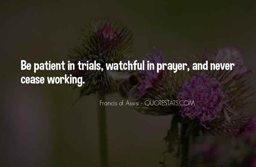 Francis Of Assisi Quotes #306454