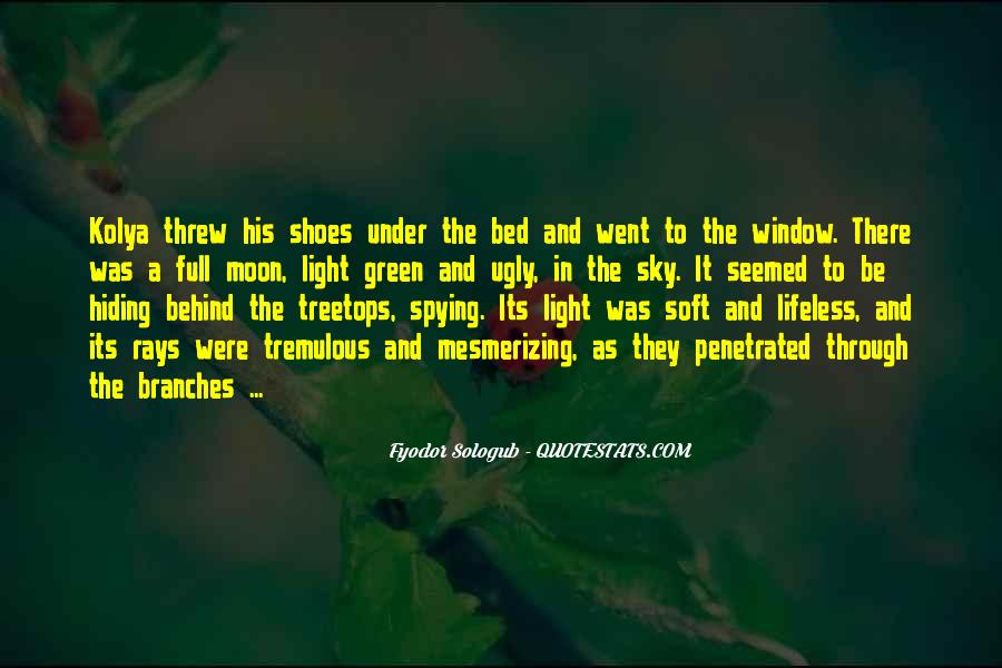 Fyodor Sologub Quotes #1263459